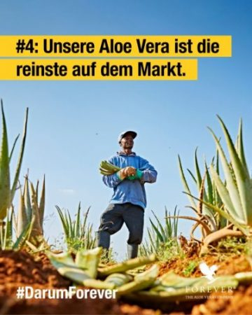 foreverliving-products-reinste-aloe-vera