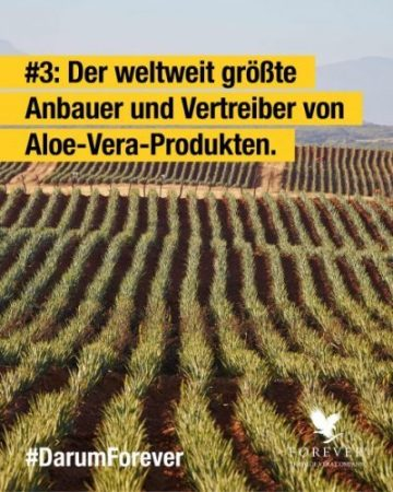 foreverliving-products-weltweit-groesste-aloe-anbauer